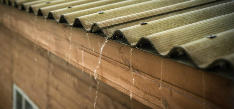 How to Waterproof Your Shed