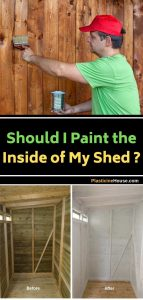 Painting Inside of the Shed