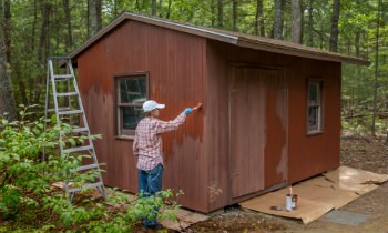 Painting wooden shed