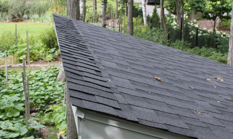 Shingle shed roof top edge