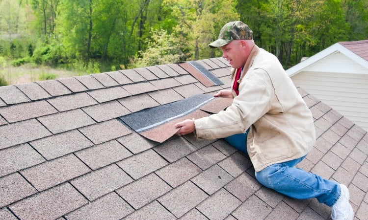 Shed Roof Repair How To Do It In The Right Way