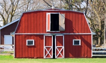Shed with Loft